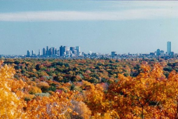 usa_massachusetts_boston_foliage